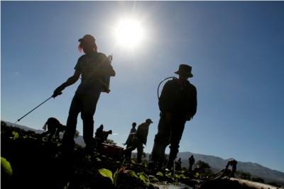 La SRT cuida a los trabajadores expuestos a radiación UV solar