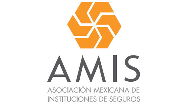 AMIS resalta la importancia de aprovechar las oportunidades digitales